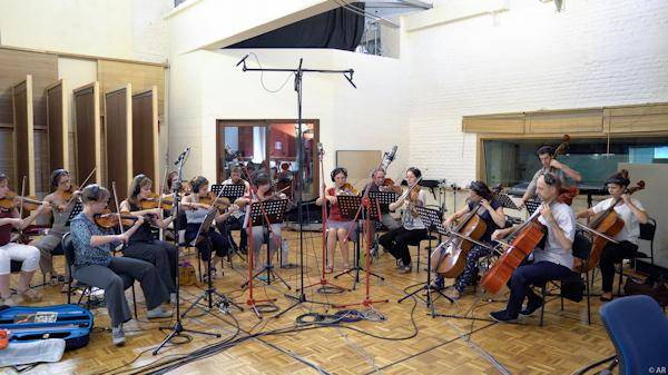 Fabrice alleman orchestre de chambre udiverse for Chamber l orchestre de chambre noir